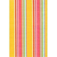 Happy Stripe Indoor/Outdoor Area Rug