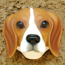 'Sweet Brown Beagle' Mask Wall Décor