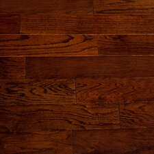 "Dakota II 5-1/2"" Engineered Red Oak Hardwood Flooring in Oak"