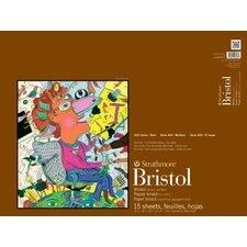 400 Series 2 Ply Vellum Surface Bristol Paper (Set of 6)