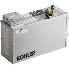 9-Kw Steam Generator for Custom Application