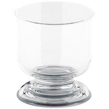 Artifacts Glass Tumbler