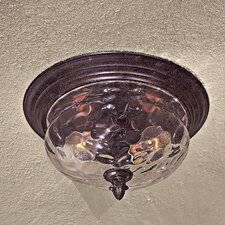 Great Outdoors 2 Light Flush Mount