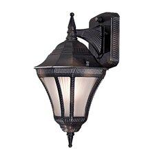Segovia 1 Light Wall Lantern