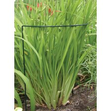 Prop-Ups Plant Support (Set of 12)