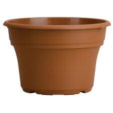 Panterra Round Pot Planter (Set of 12)