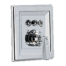 Town Square Shower Valve Trim Kit With Metal Lever Handle & EverClean