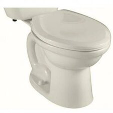 Colony Fit Right Height 1.6 GPF Elongated Toilet Bowl Only