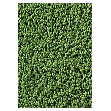 Soft Solids KIDply Grass Green Area Rug