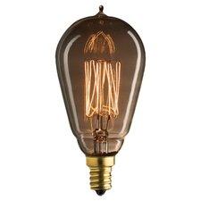 Nostalgic Edison 25W Incandescent Light Bulb (Set of 3)