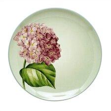 "Colorwave Green 8.25"" ""Hydrangea"" Salad Plate (Set of 4)"
