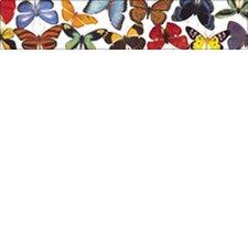 Butterflies and Moths Photo Classroom Border (Set of 2)