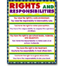 Rights and Responsibilities Chart (Set of 3)