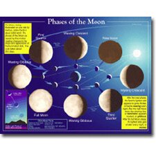 Phases of The Moon Chart (Set of 3)