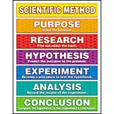Scientific Method Friendly Chart (Set of 3)