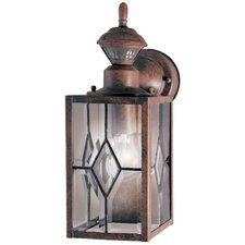Motion Activated 1 Light Wall Lantern Security Light
