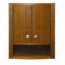"""Adrianna 22"""" x 26"""" Wall Mounted Cabinet"""