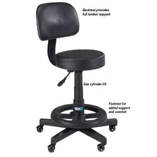Deluxe Grooming Stool with Back Rest
