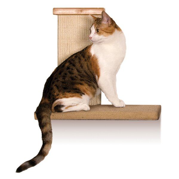 Cat Wall Perch With Scratching Post