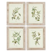 Framed Olive Leaf Botanical Painting Print