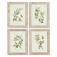 Framed Olive Leaf Botanical Painting Print