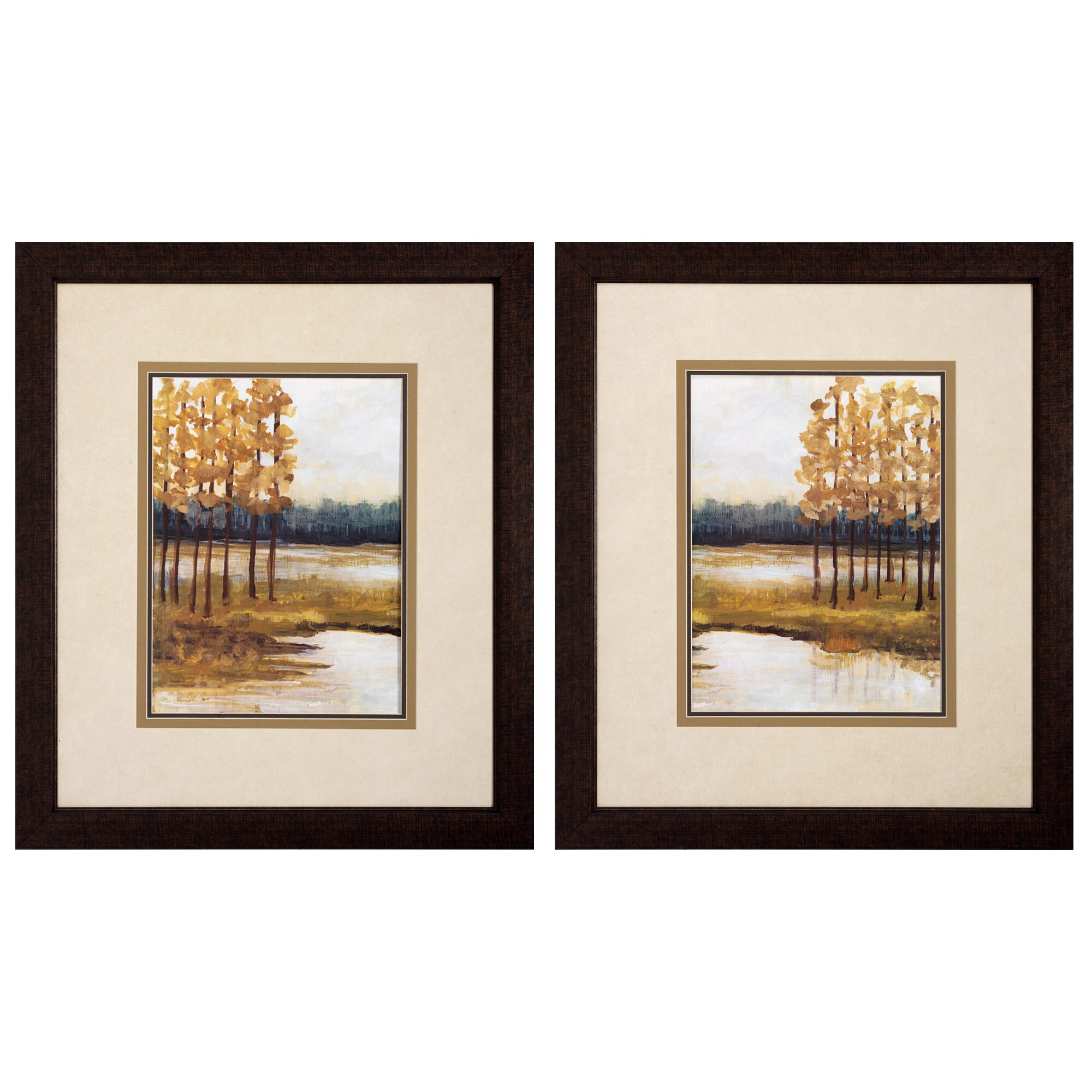Propac Images Etoile 2 Piece Framed Wall Art Set Reviews Wayfair