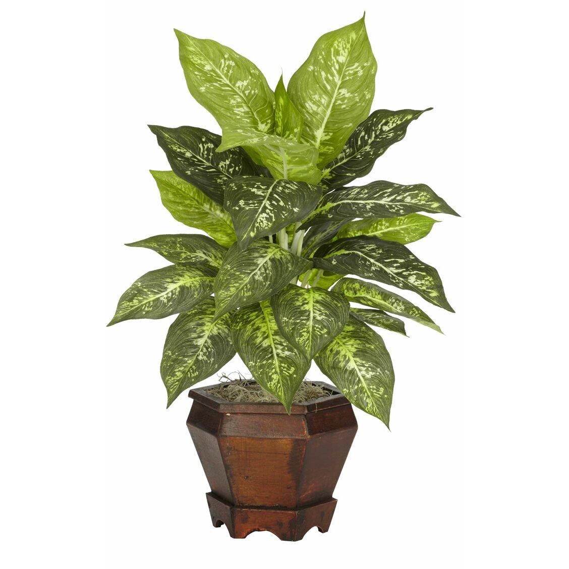 Nearly Natural Dieffenbachia Assorted Silk Desk Top Plant