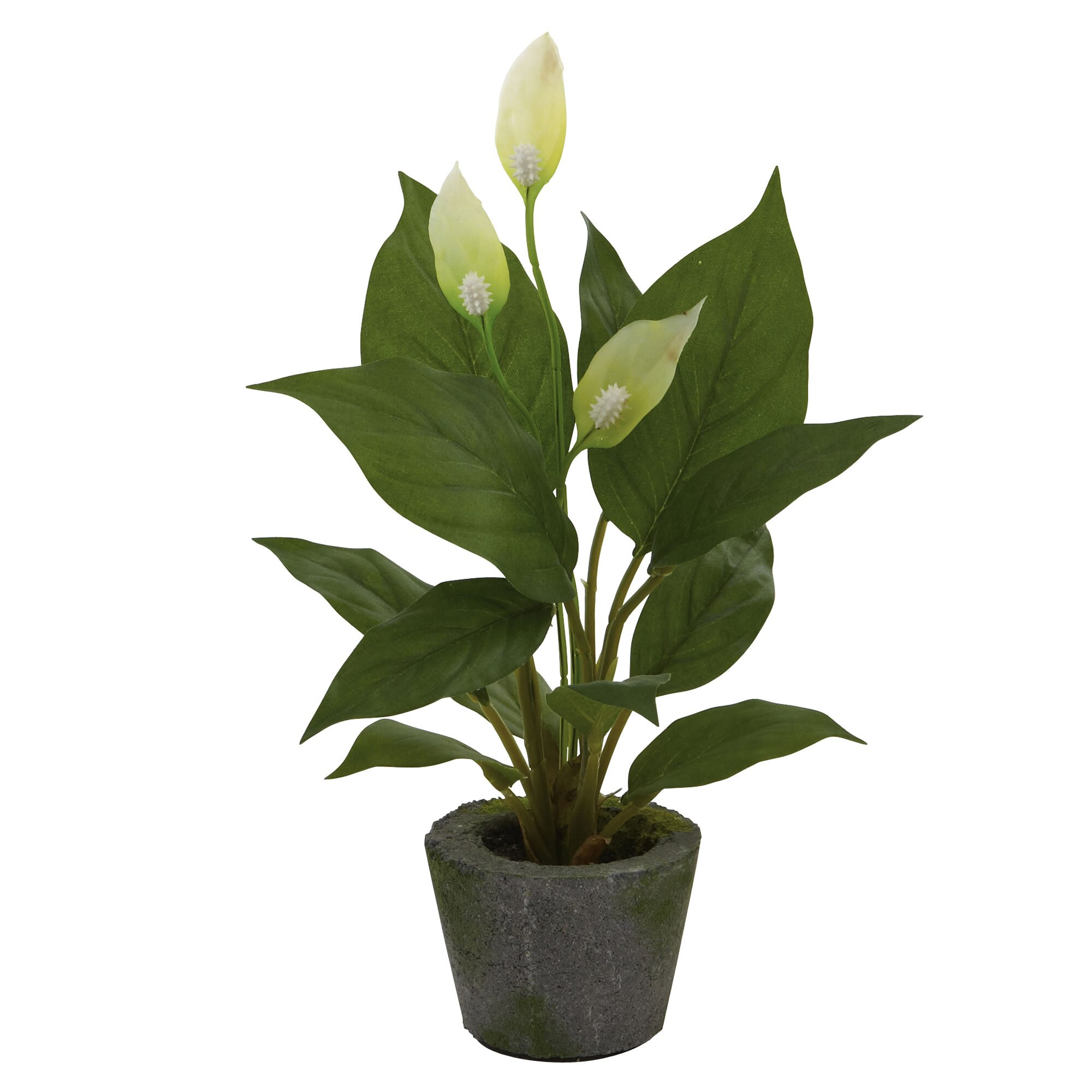 Nearly Natural Nearly Natural Spathyfillum Desk Top Plant