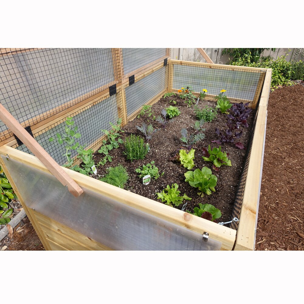 6 Ft. W X 3 Ft. D Cold-Frame Greenhouse