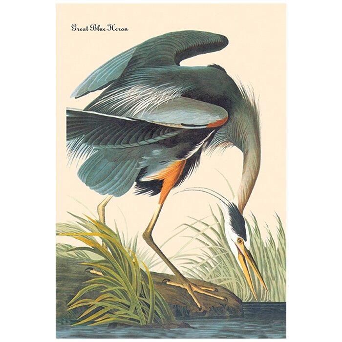 Canada Goose vest sale store - Great Blue Heron by John James Audubon Graphic Art on Wrapped ...