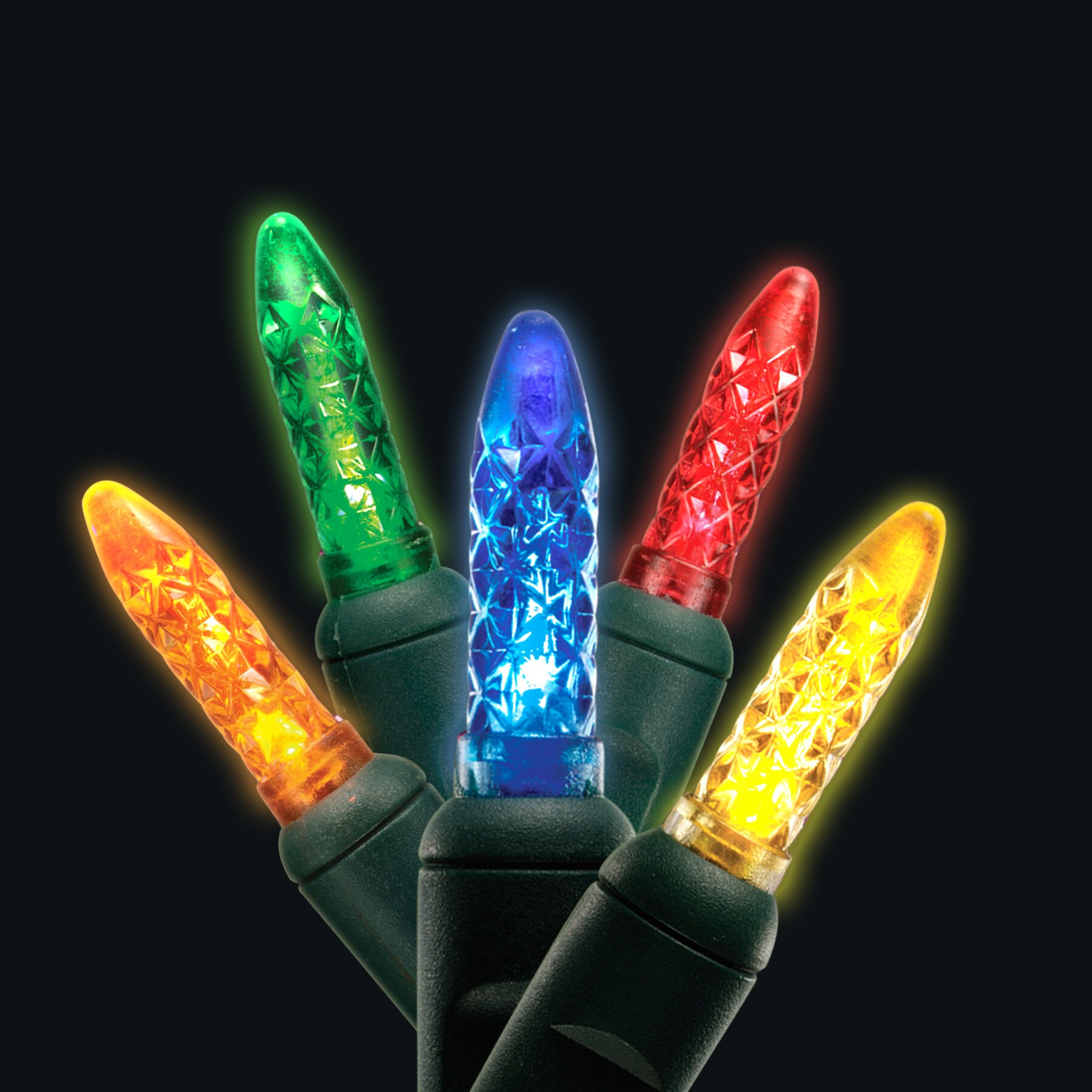 50 Mini Light Holiday LED Light Wayfair