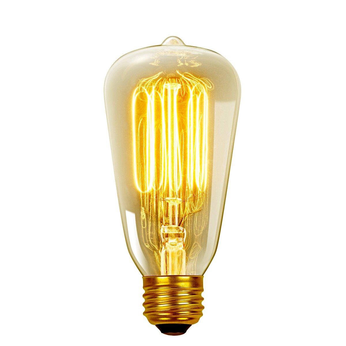 Globe Electric Company Vintage Edison 40 Watt 2700k S60 Squirrel Cage Incandescent Filament