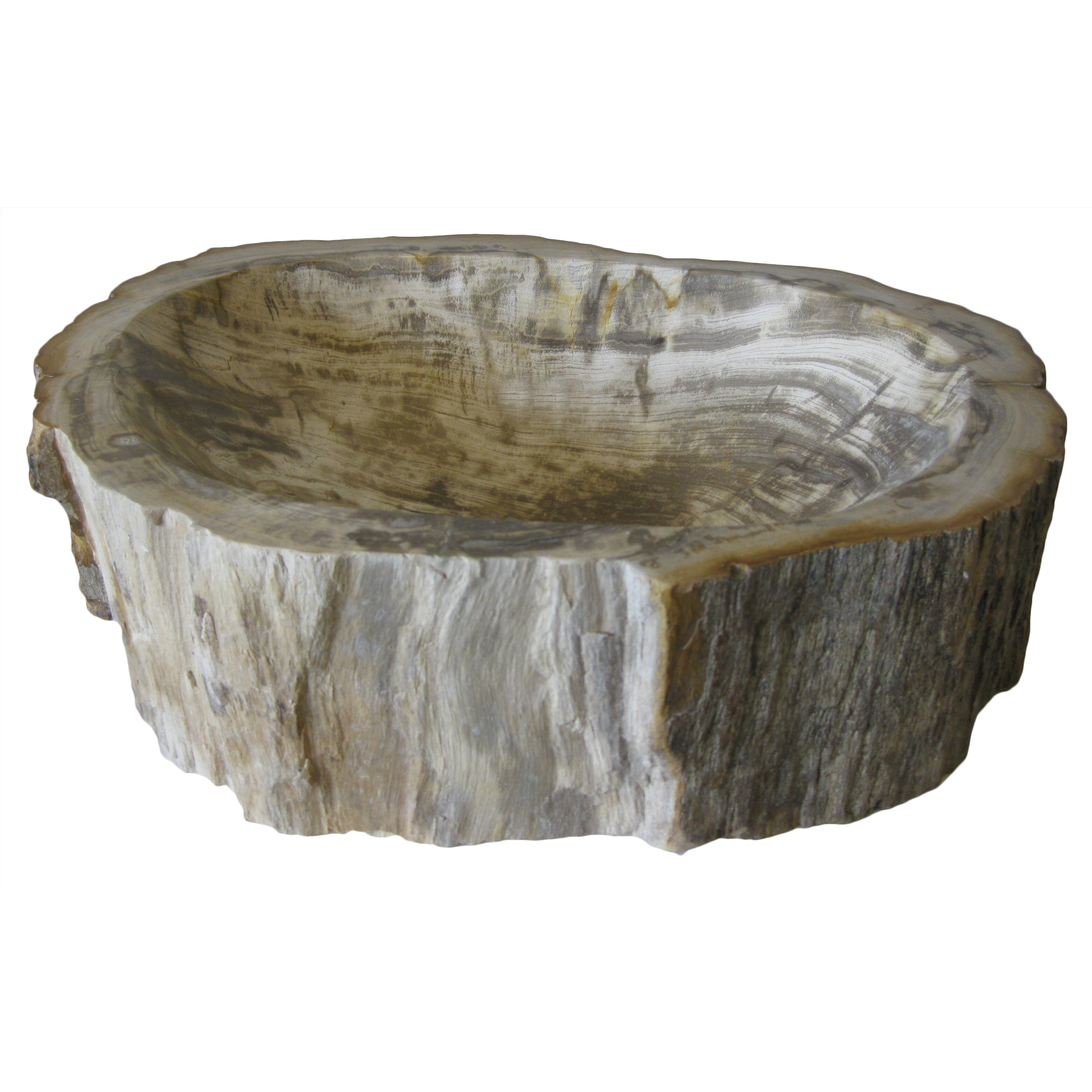 Novatto Petrified Fossil Wood Vessel Sink & Reviews Wayfair