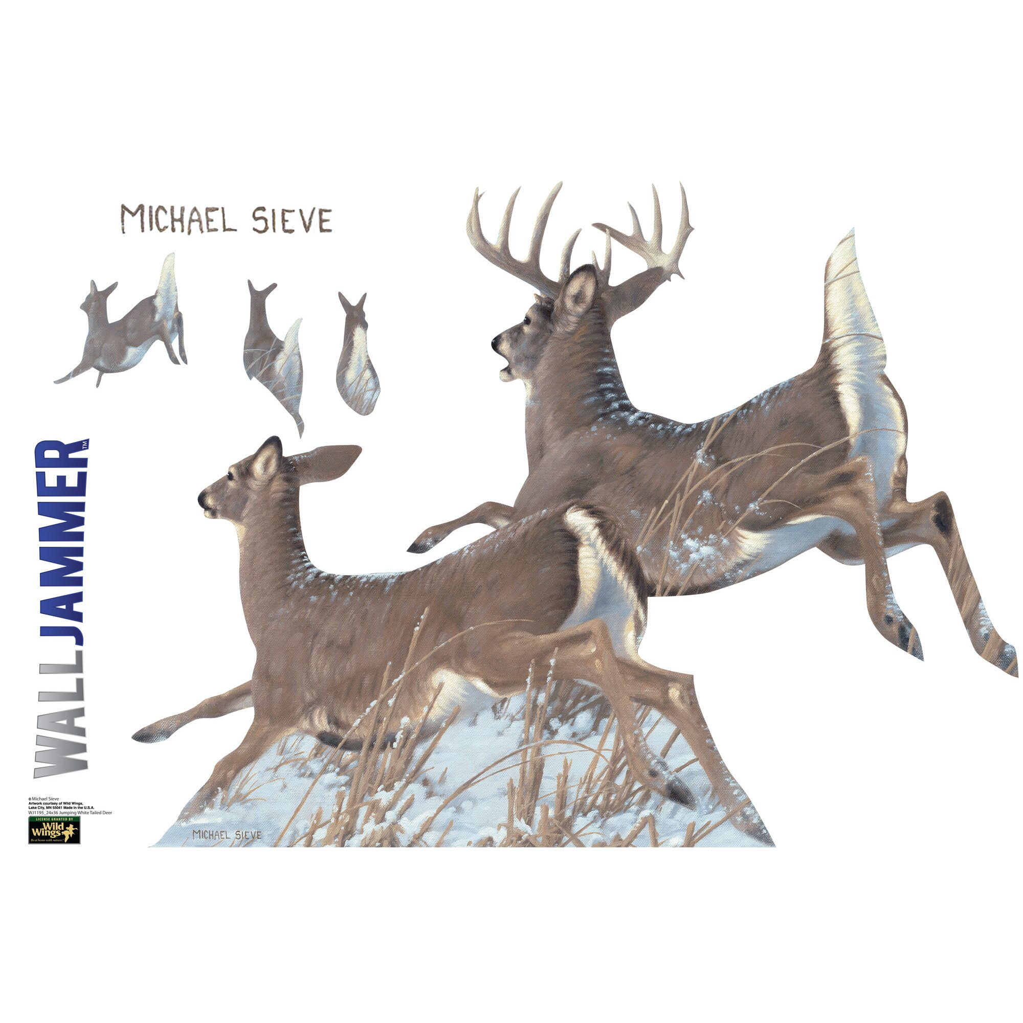 Advanced Graphics Cabela S Tailed Deer Wall Decal