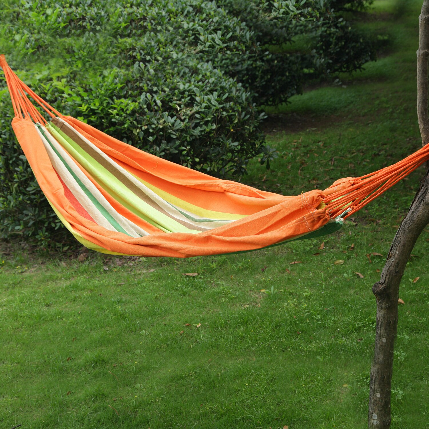 Backyard Hammock Reviews :  Tree Hanging Suspended IndoorOutdoor Hammock Bed & Reviews  Wayfair