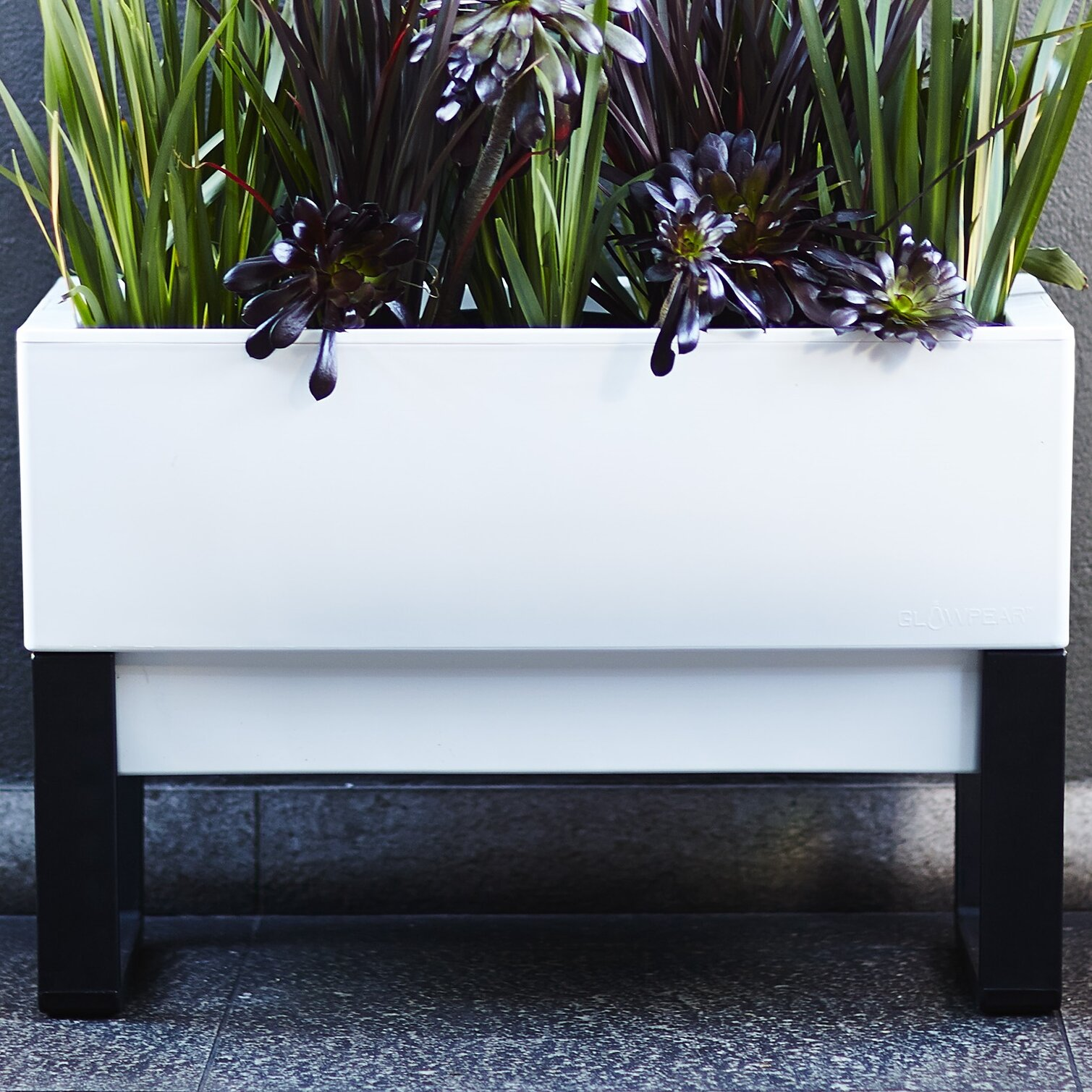 glowpear rectangular planter box reviews wayfair. Black Bedroom Furniture Sets. Home Design Ideas
