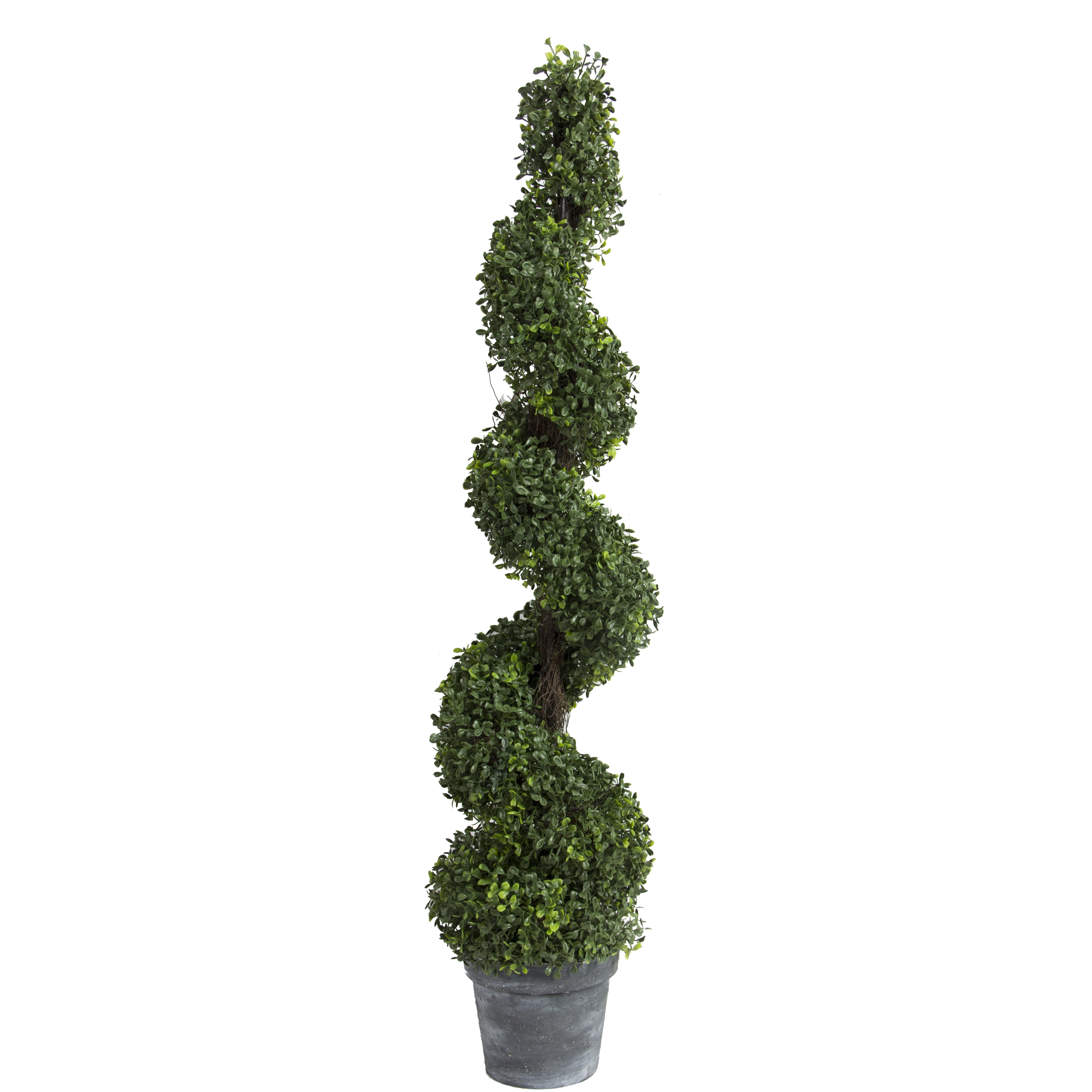 """Pre-Lit Boxwood Topiary 48"""" Christmas Tree / 150 Clear Lights"""