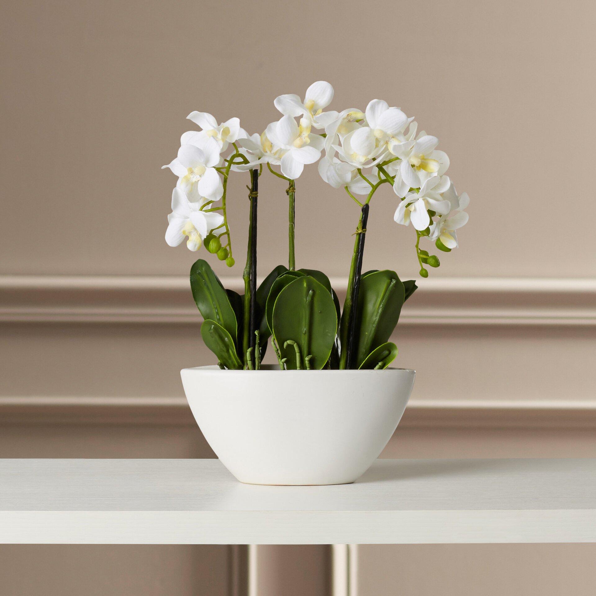 Flower Pots With Artificial Flowers Lorelei Phalaenopsis Silk Flowers Hohn