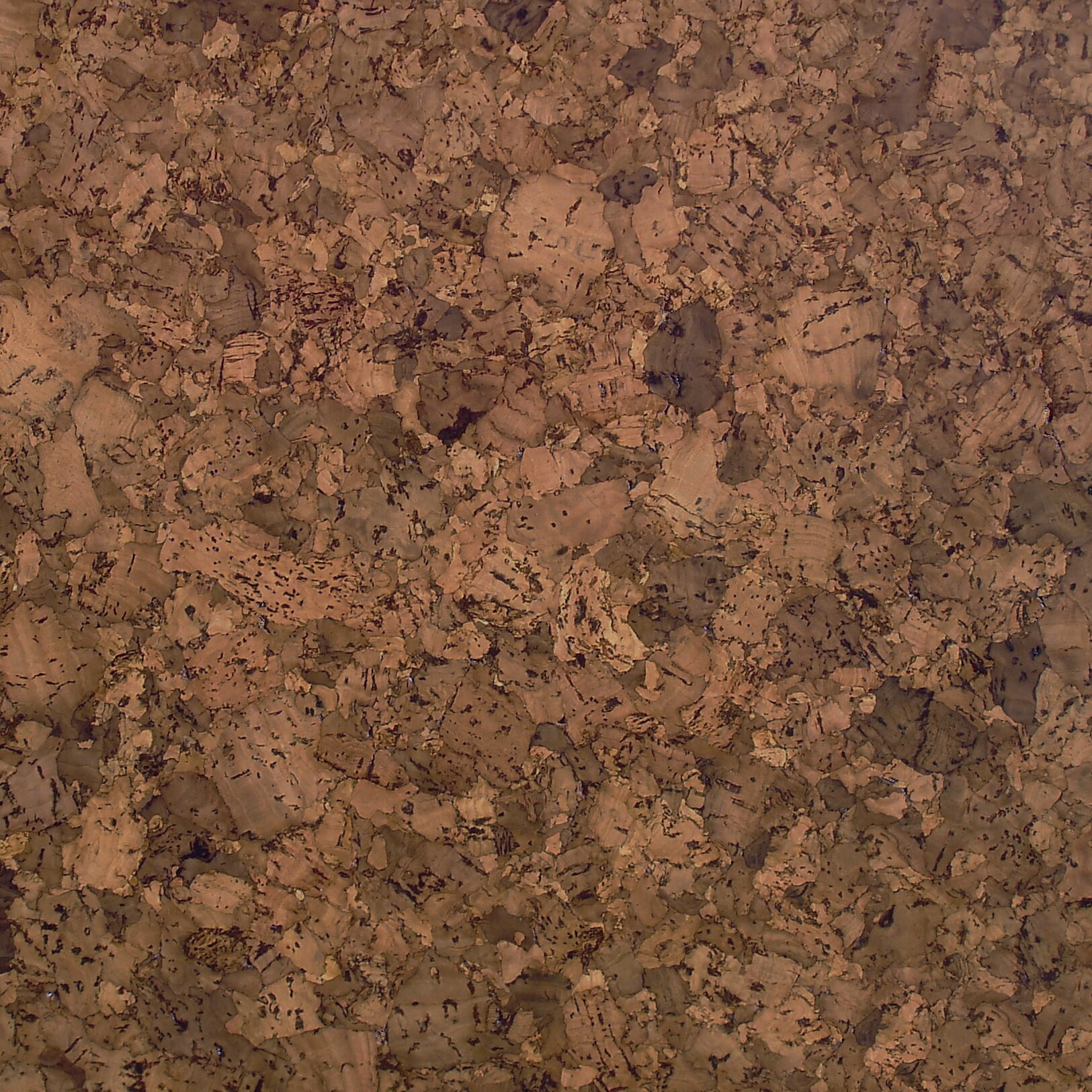 APC Cork Floor Tiles 12 Solid Cork Hardwood Flooring In Drops