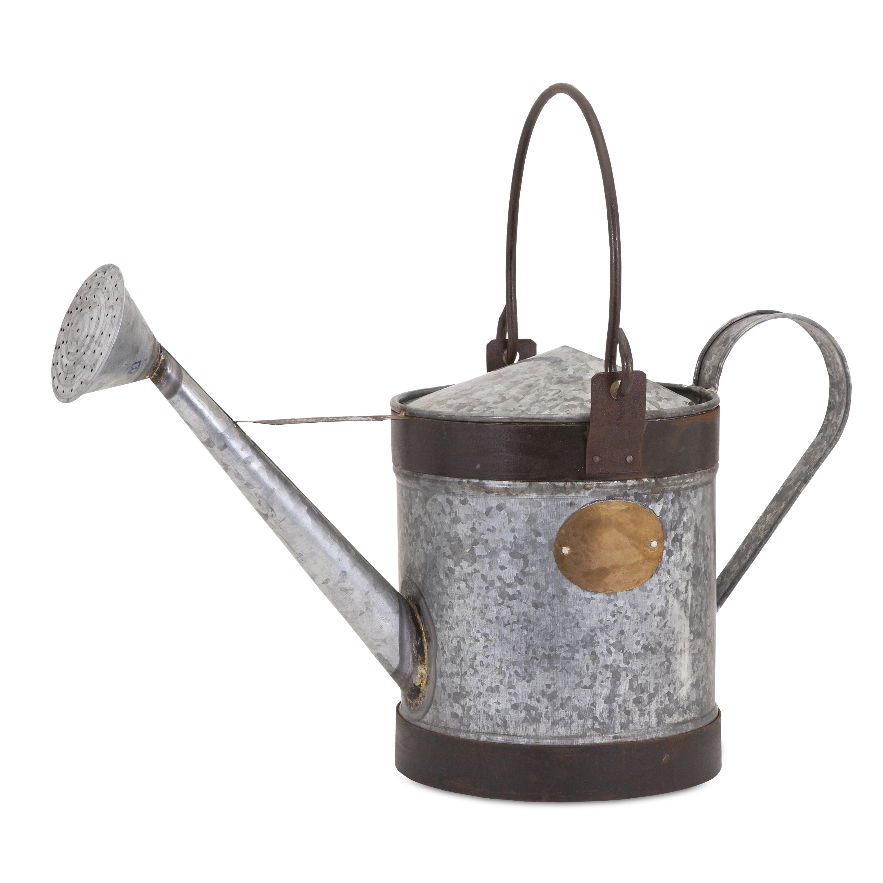 Decorative Walsh Watering Can Wayfair