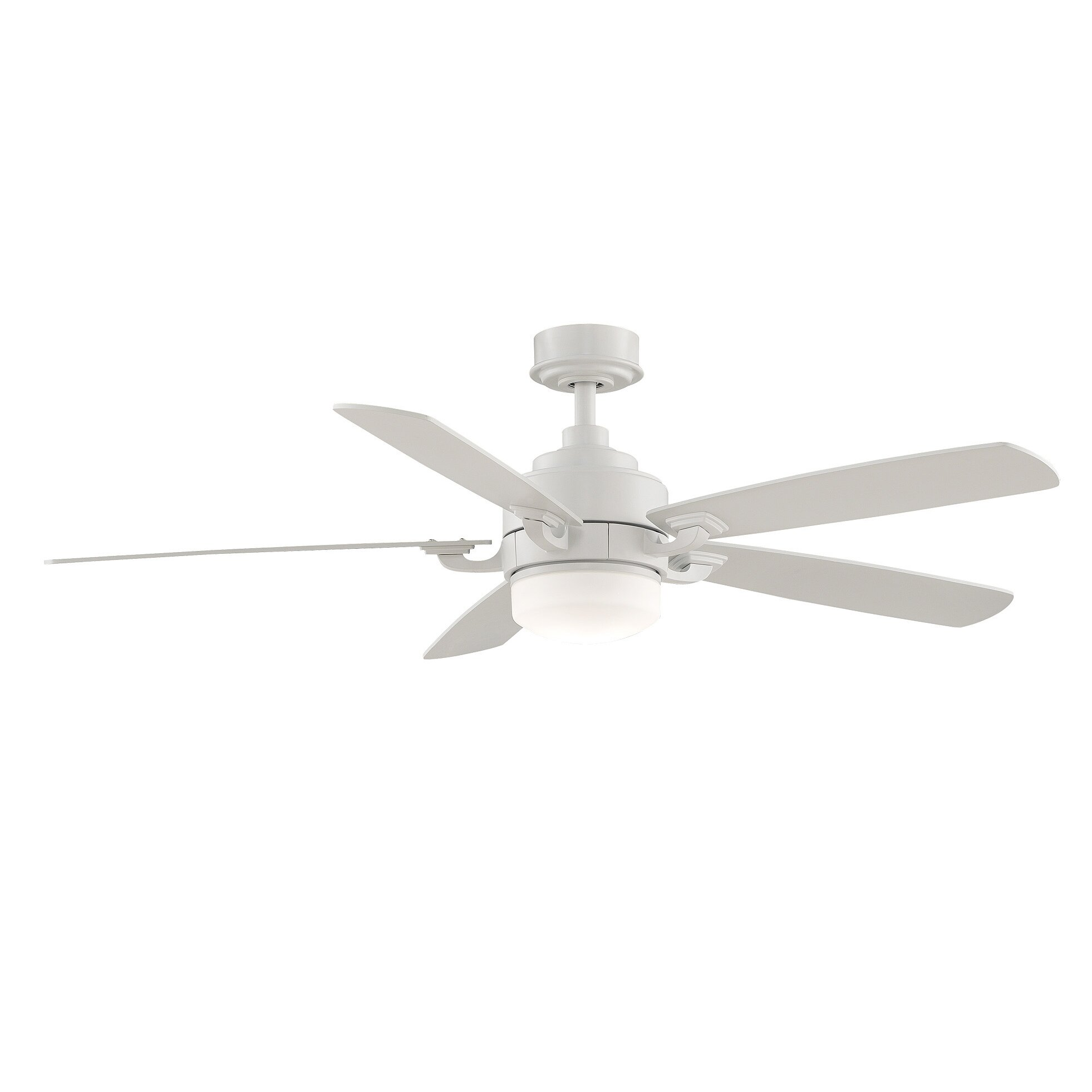 Fanimation Benito 5 Blade Ceiling Fan Amp Reviews Wayfair