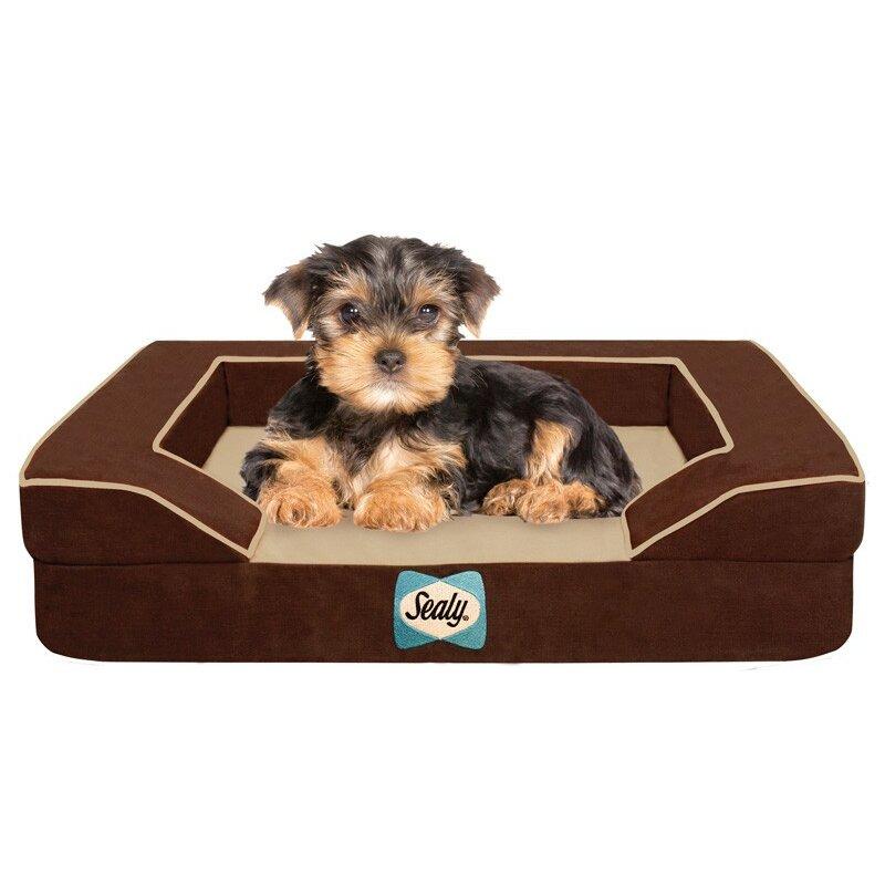sealy bolster dog bed reviews wayfair. Black Bedroom Furniture Sets. Home Design Ideas