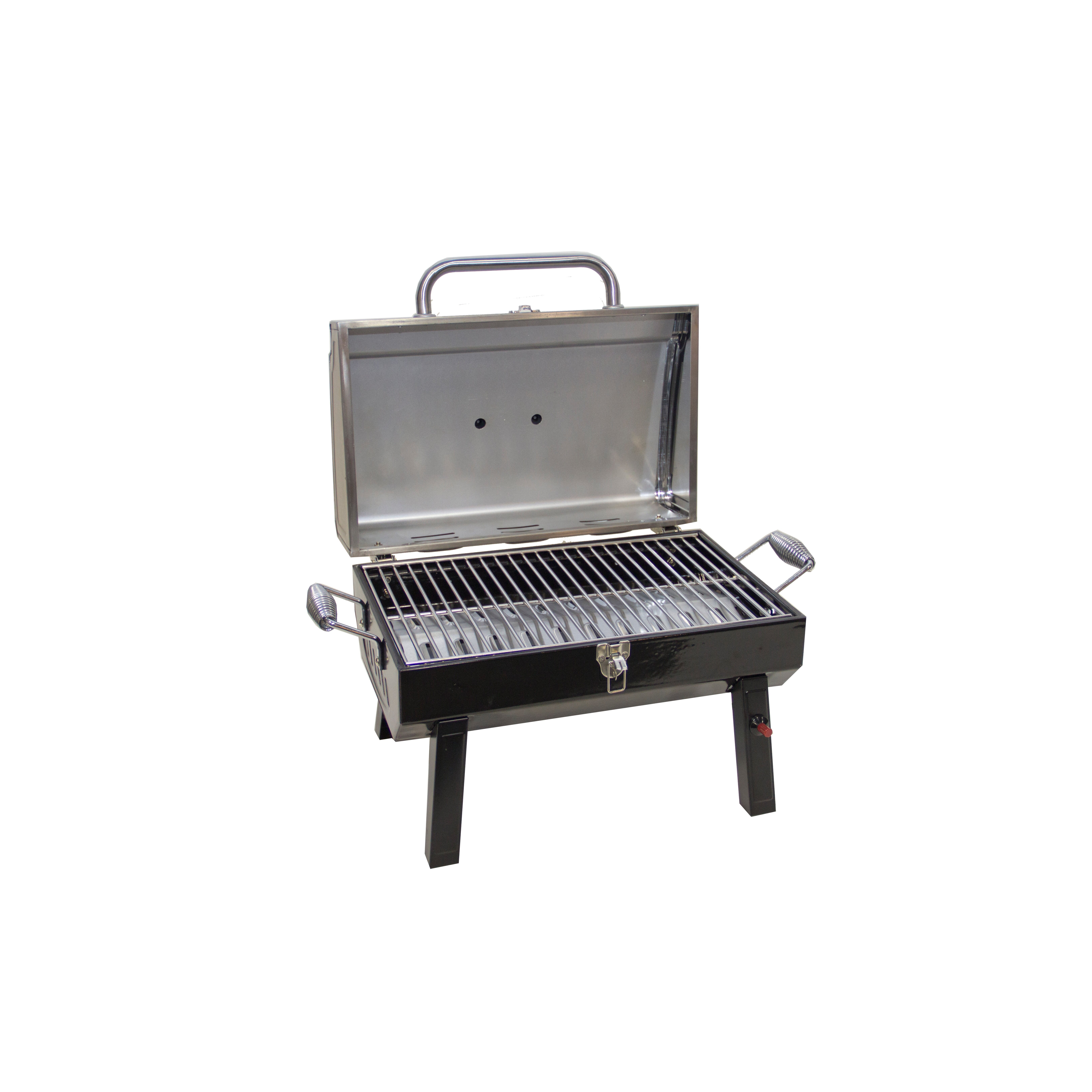 Exceptionnel Photos Of Tabletop Gas Grill